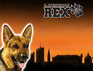 Бесплатный игровой автомат Rex играть без регистрации