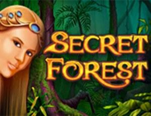 Игровой автомат Secret Forest версия игры на настоящие деньги