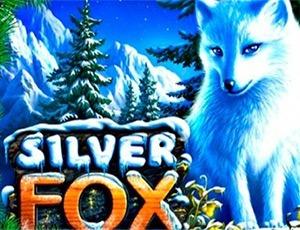 Игровой автомат Silver Fox версия онлайн-слота на деньги