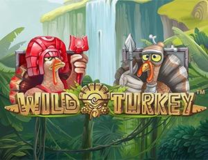 Играть в игровой автомат Wild Turkey за деньги