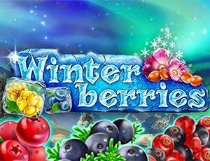 Игровой автомат Winter Berries бесплатно играть онлайн